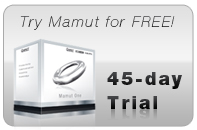 Small Business Software: Mamut Enterprise