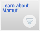 Learn about Mamut